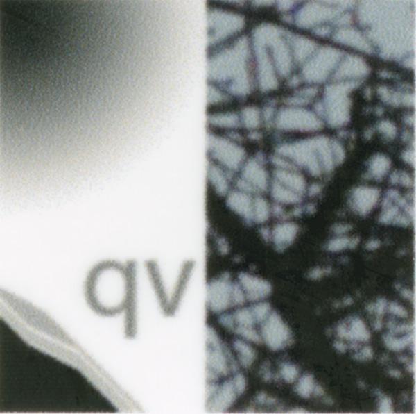 QI240-360bicubicNoS