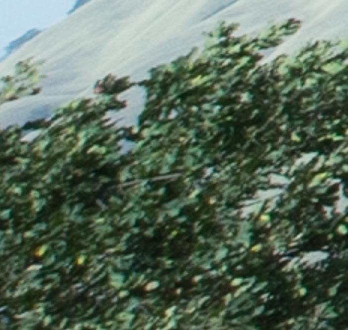 Kolari f/11