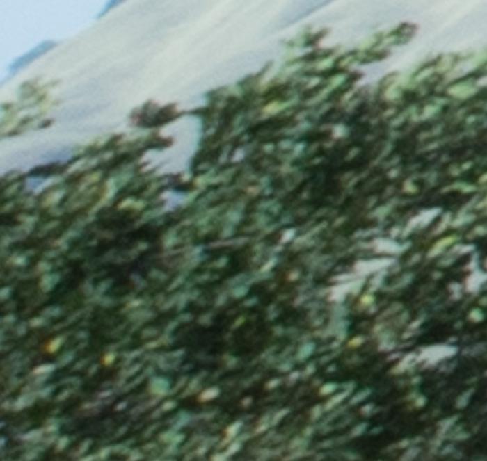 Kolari f/22
