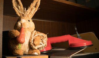 Viltrox 35 mm f/2 FE meets the bunny